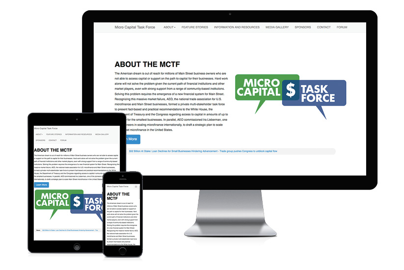 Micro Capital Task Force